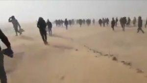 algeria expels blacks, libya slave trade
