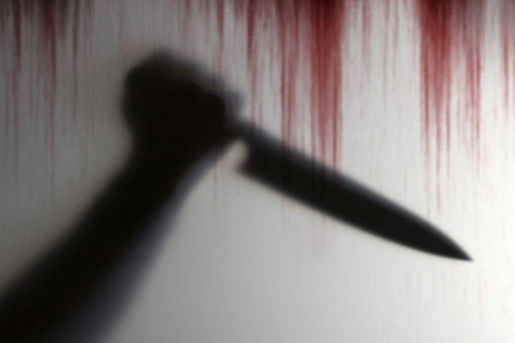 dr fritz stabbed, former german president son stabbed