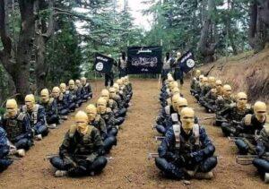 jihadists nigeria